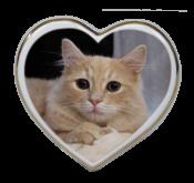 Srdce  10x9,5 cm