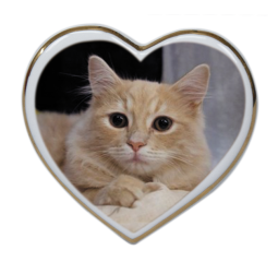Srdce  10x9,5 cm č.1